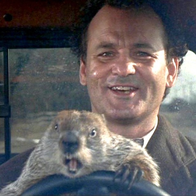 #groundhogday – #billmurray