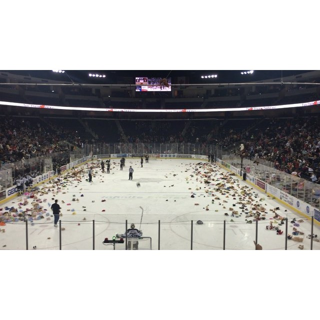 The teddy bear toss …