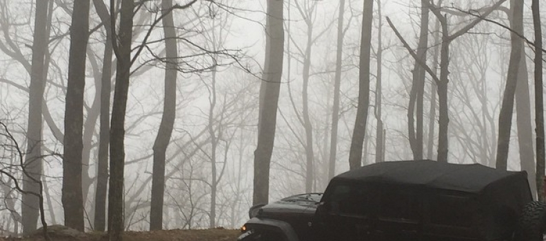#jeep – #jeepgirl – #fog – #beatssittingonthecouch